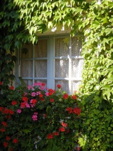 French Window