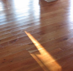 Illustration hardwood cupping for Hardwood floors cupping